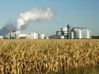Hur framställs etanol?